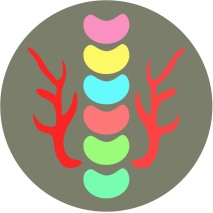 Logo beans v2